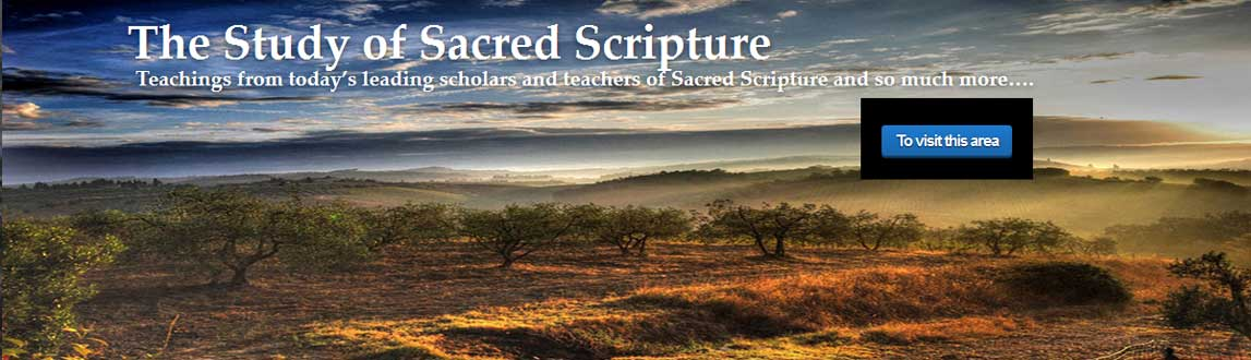 The Study of Sacred Scripture – Discerning Hearts