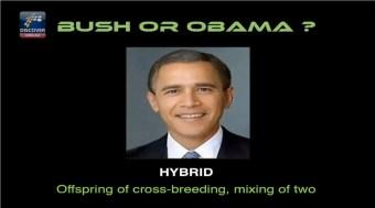 Bush Obama Hybrid - The Nephilim (Fallen Angels) Controversy