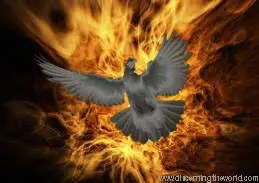 Biblical Holy Spirit vs  Unholy Spirit of Fire ⋆ Discerning