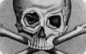 Illuminati Symbols Skull