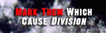 Mark Them Which Cause Division