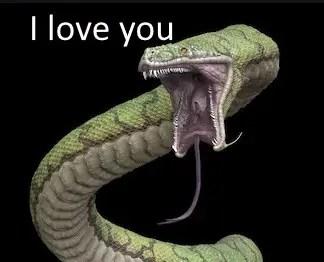 Reptilian-love