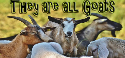 Split in the Church - They are still all goats