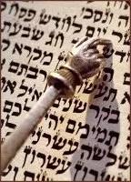 Torah Pointer