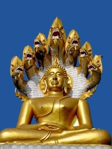 Snake Buddha 01