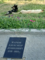 The October monument dogs