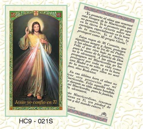 Divine Mercy Spanish Prayer Card And Chaplet