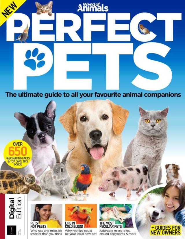 Perfect Pets (Digital)