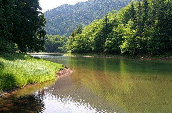 Cave Mountain Lake Fishing