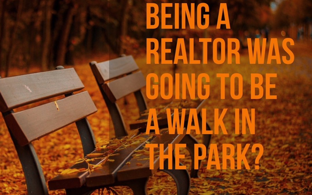 You Thought Being A Realtor Was Going To Be A Walk In The Park?