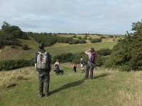 Walking in the Wolds