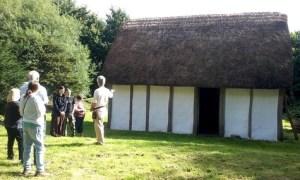 Saxonhouse