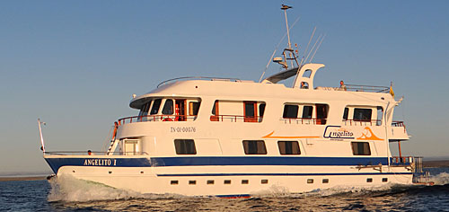 Angelito - Galapagos cruises and tours