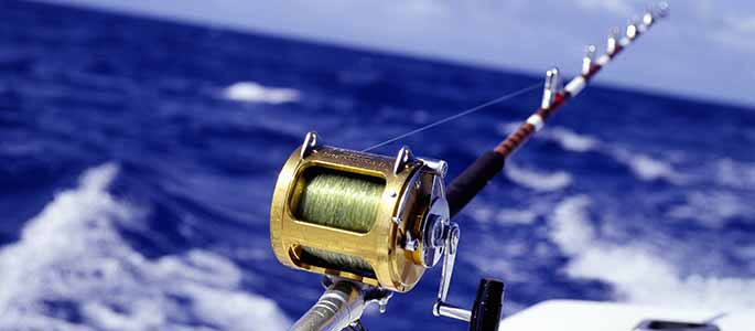 Sport Fishing Exclusive Private Charter
