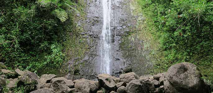 Manoa Valley Waterfall