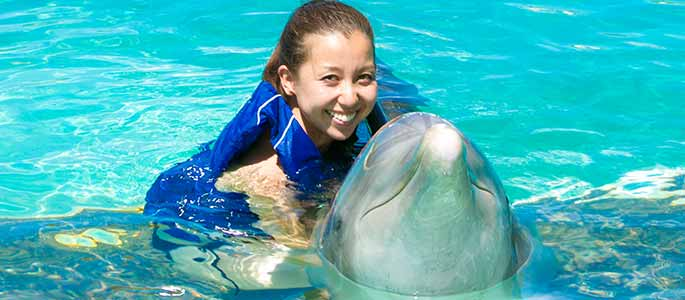 Friendly Dolphins of Sea Life Park