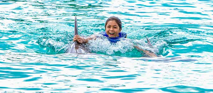 Dolphin Royal Swim Adventure at Sea Life Park