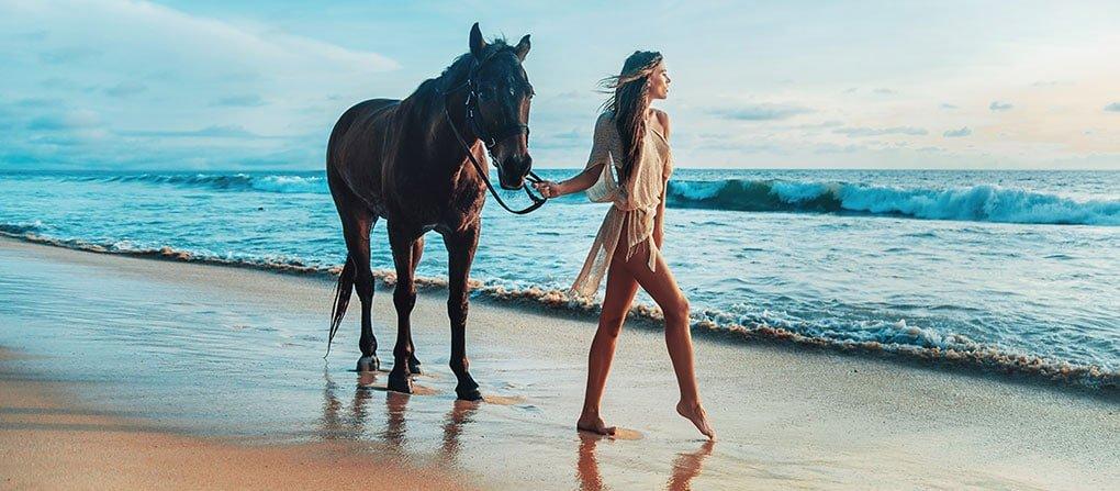 north-shore-horseback-mastercard