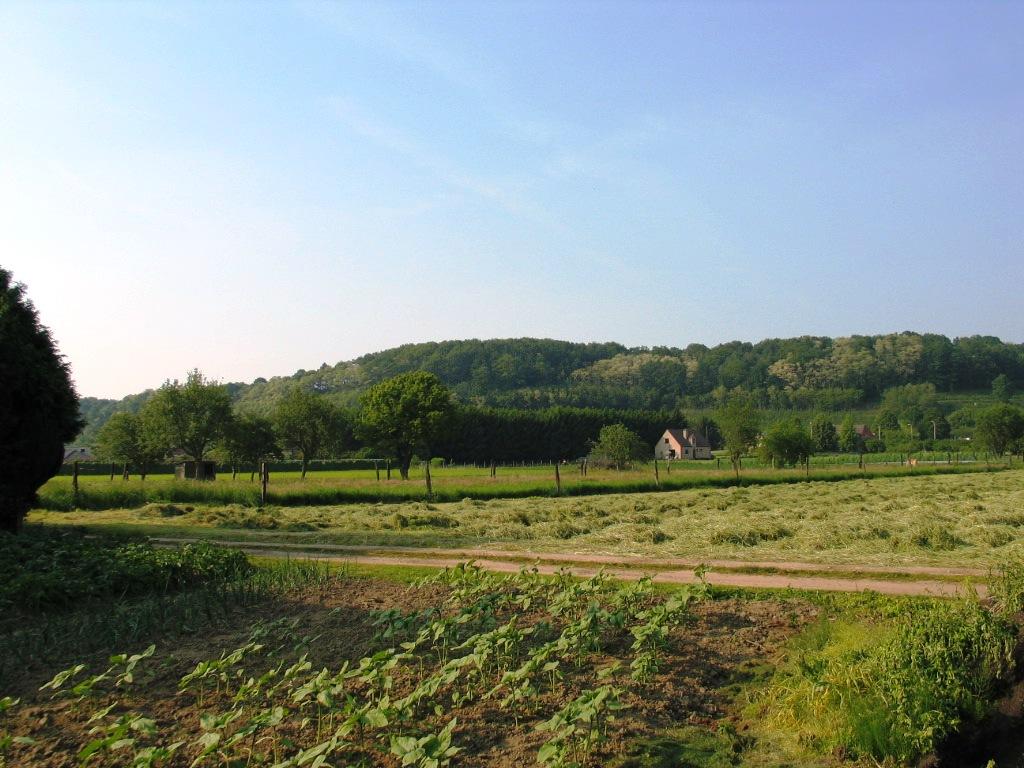 the wijngaardberg