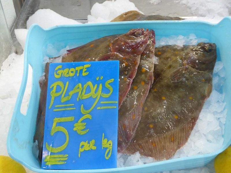 Plaice, Oostende fish market