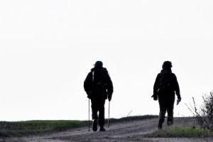 Walkers silhouette