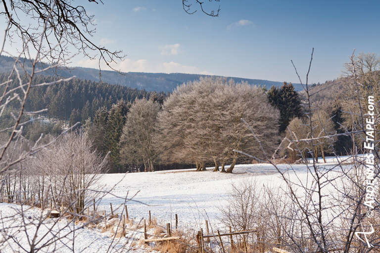 The Belgian Ardennes