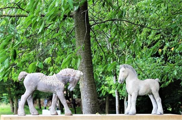 Belgian draft horses?