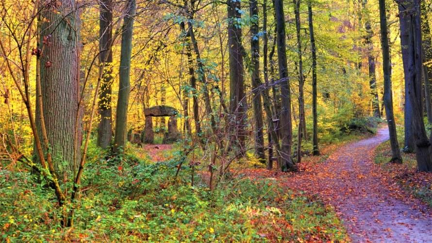 Belgian Stonehenge in la Forêt de Soignes, Belgium
