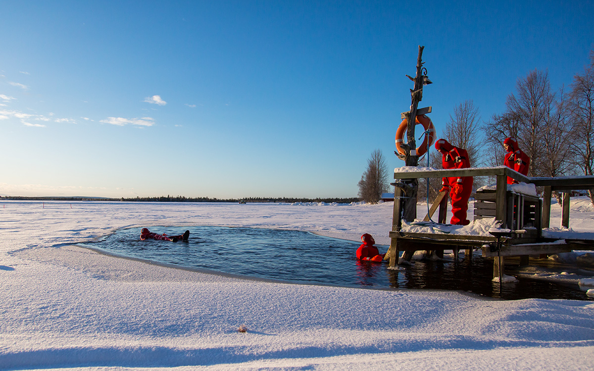 Finland November Northern Lights