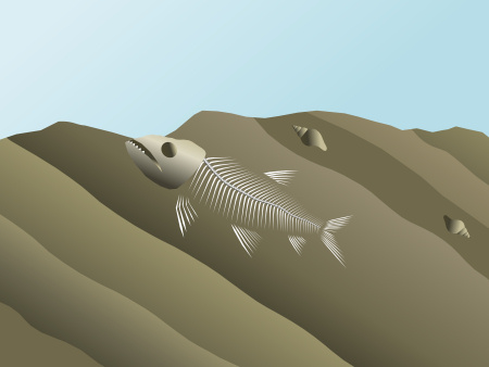 The fossil fish is exposed at the surface