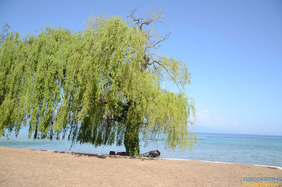 Ohrid-(32)
