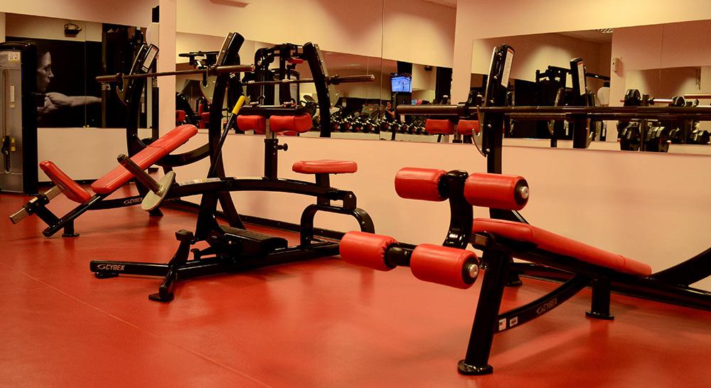 Best Gym In Skopje Cybex Gym
