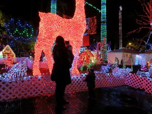 Bright Nights in Stanley Park {Holiday Tradition}