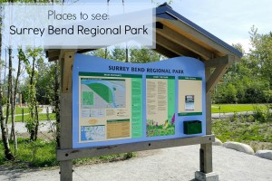 Places to see: Surrey Bend Regional Park