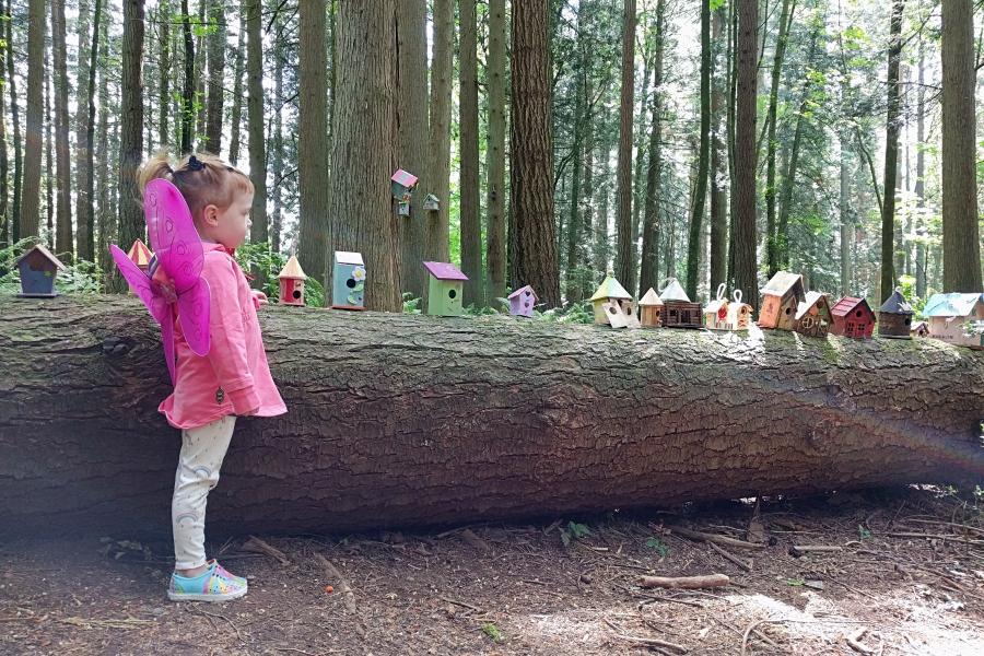 redwoodpark09