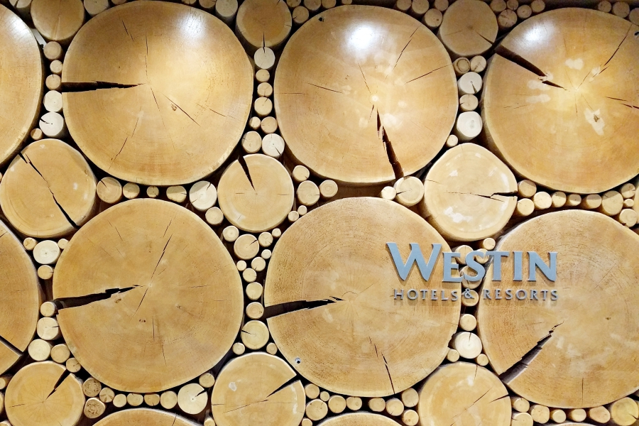 The Westin Whislter 01