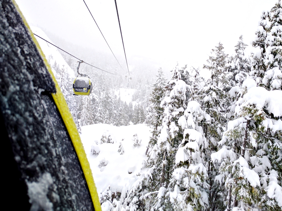 Go play outside: Sea to Sky Gondola