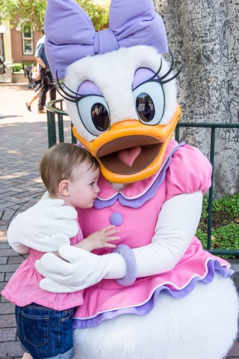 Going to Disneyland with a toddler. Meeting characters. Daisy Duck.