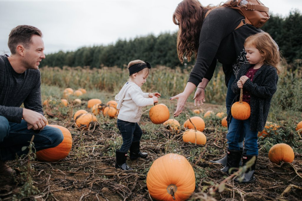 Rules of the Pumpkin Patch with a Kindergartener and Toddler.