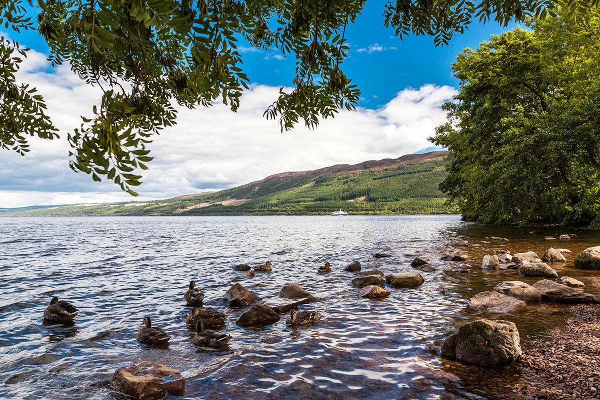 Discover London - VIP tours - Loch Ness