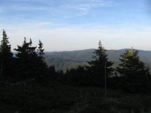 Dusk falls early.  Jeseniky mountain hiking trail, Czech Republic