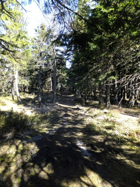 Sunshine, shade and snow on the ridge path. Hiking trips in the Czech Republic - Smrk (Spruce Mountain)