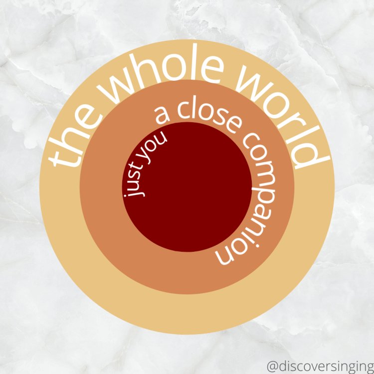 """Three concentric circles with the words """"the whole world"""" on the outer circle, """"a close companion"""" on the middle one, and """"just you"""" in the central circle."""