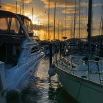 Yachts anchored at CrewsInn Chaguaramas. Photo: William Barrow