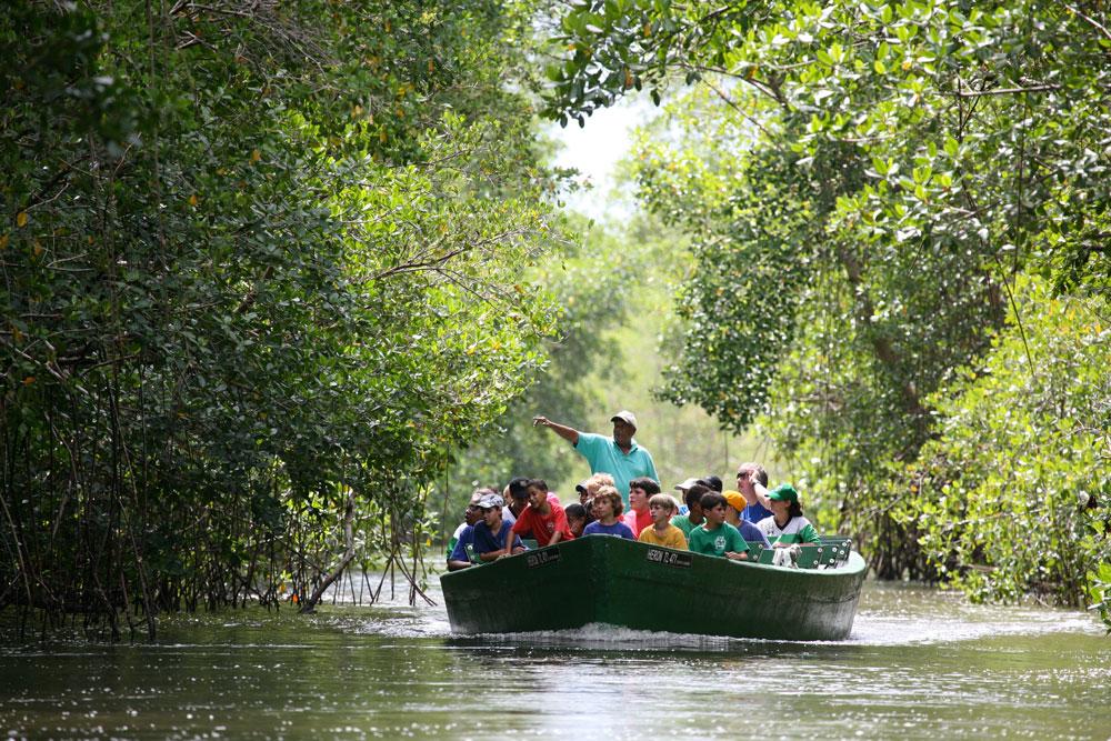 A Winston Nanan Caroni Swamp boat tour in central Trinidad. Photo by Stephen Broadbridge