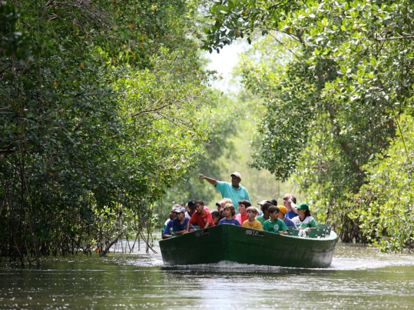 A Winston Nanan Caroni Swamp boat tour in central Trinidad. Photo by Stephen Broadbridge