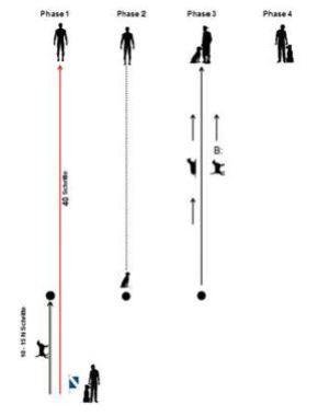 Schema Esercizio Controllo a distanza IPO-R DiscoveryDogs