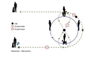 Schema passaggio nel Gruppo IPO-R DiscoveryDogs