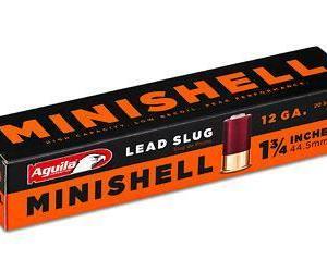 12 Gauge Minishell Slug