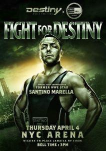 Fight For Destiny